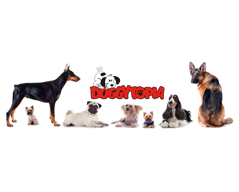 Doggytopia - Daycare - Raw and Dry Food
